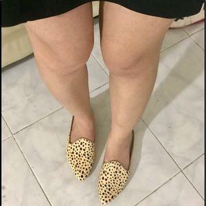 Dolce Vita Gail Women's Shoes Leopard